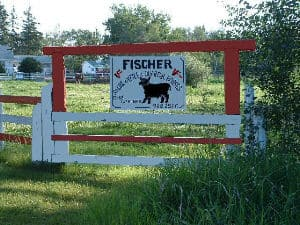Welcome:  The sign at the the entrance to my ranch.